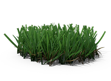 grass-rendered